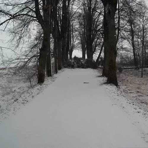 vlcsnap-2018-01-04-20h41m42s001